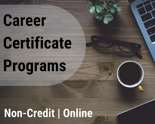 MindEdge non-credited, online, career certificate programs