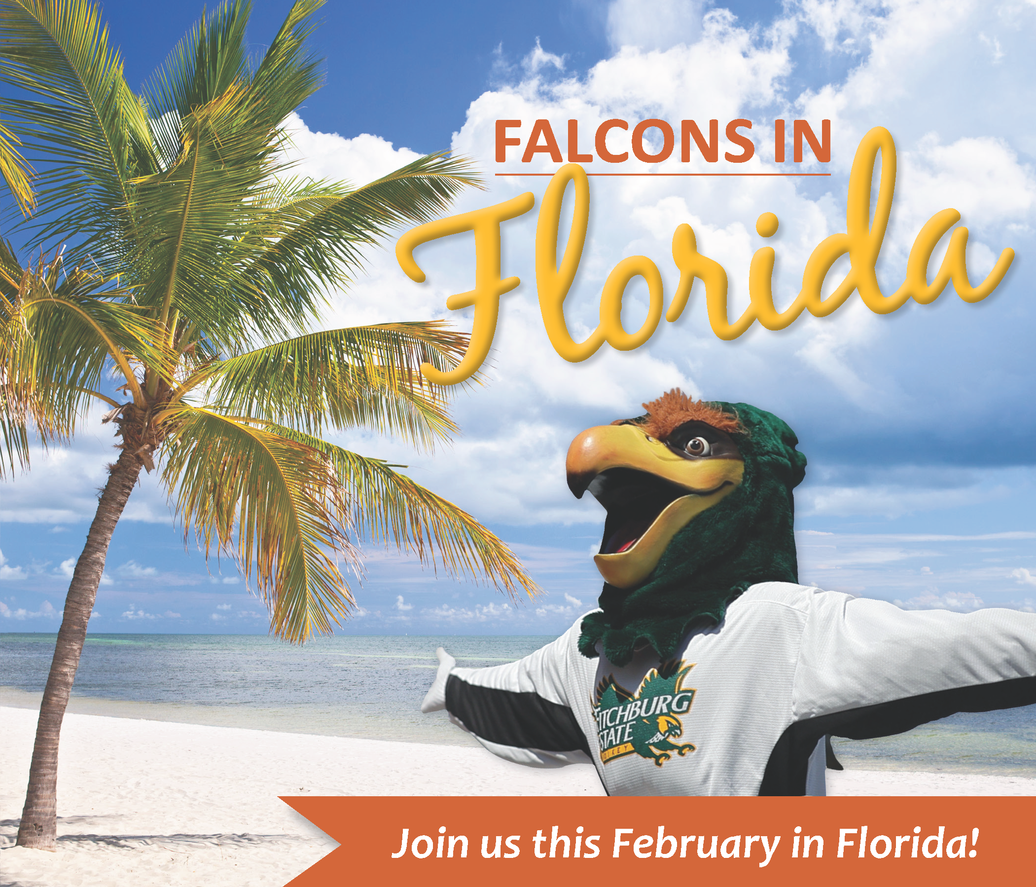 Falcons in Florida 2020